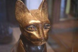 Bogini kocica